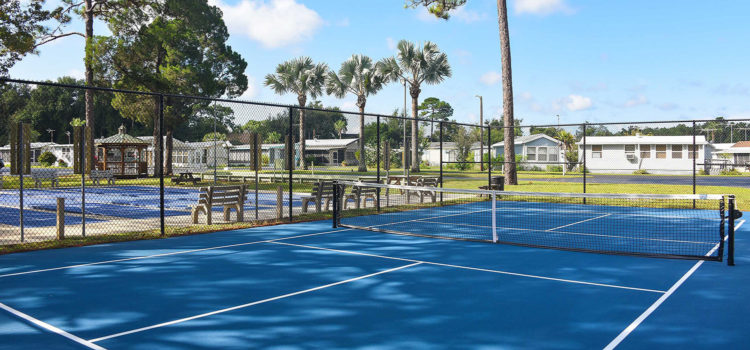 Play pickleball with friends