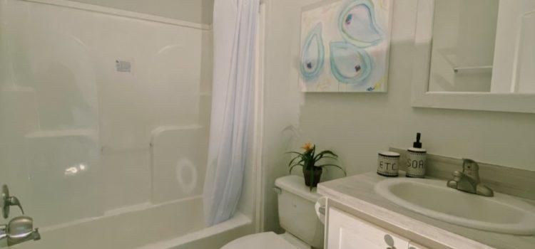 Shower and Garden Tub