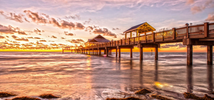 Discover Clearwater Beach – the perfect day trip