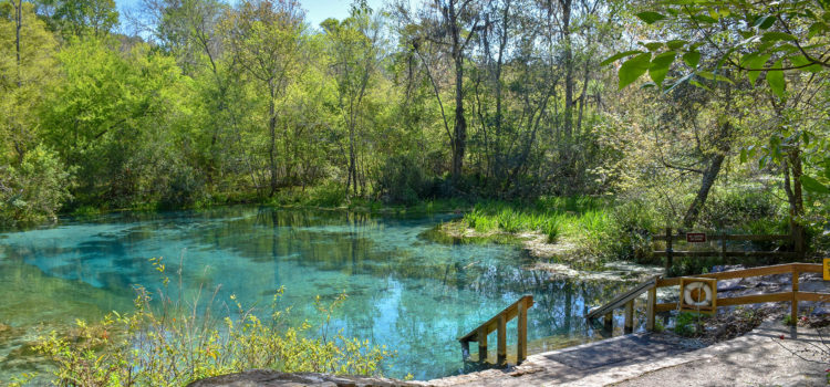 Spend the day at Blue Springs State Park
