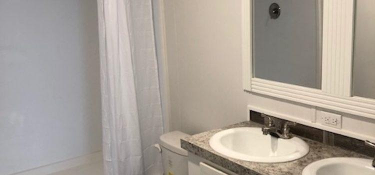 Twin Vanity Sinks