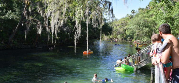 Cool off at nearby Blue Springs State Park